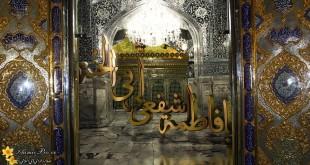 نقش علمی حضرت معصومه(س) در عالم اسلام